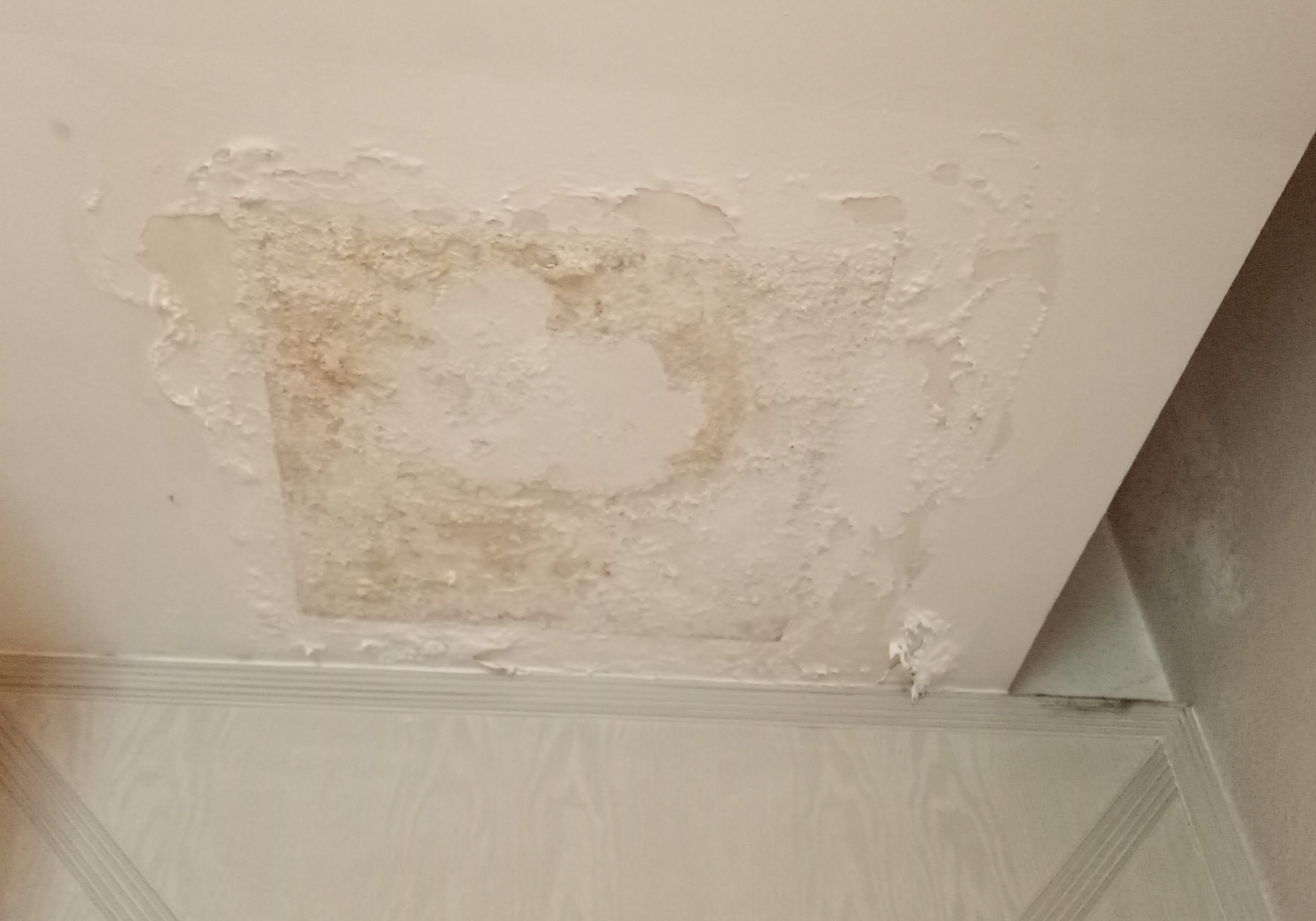 water seepage treatment singapore  renovation contractor singapore